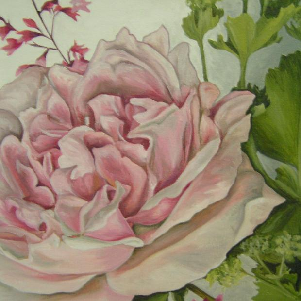 Rose with Lady's Mantle