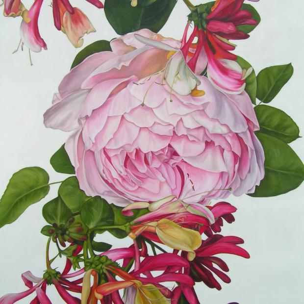 Roses & Honeysuckle